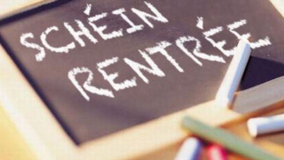 Schein_Rentrée_Internet